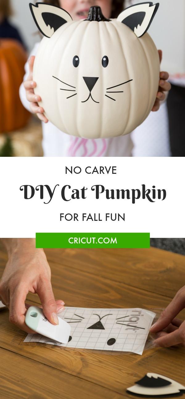 No Carve Pumpkin Idea: Cat Pumpkin
