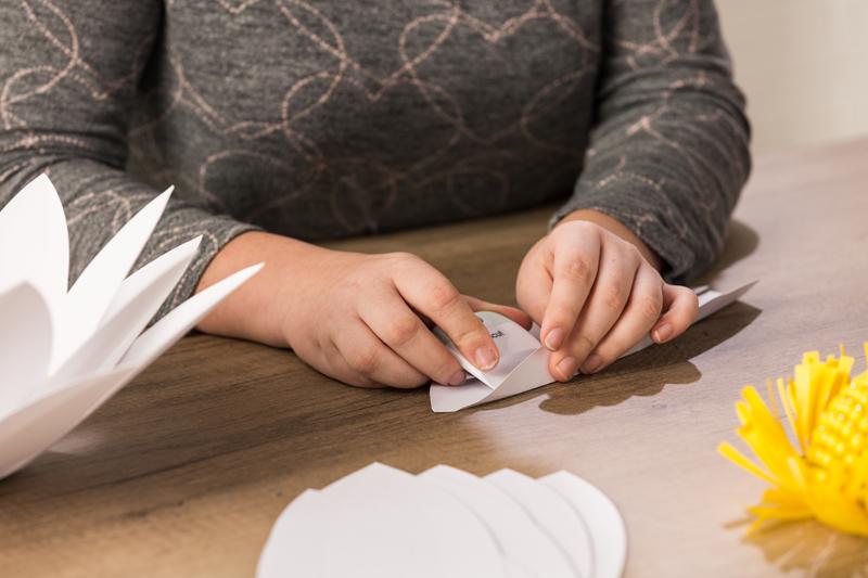 DIY Giant Paper Daisies, DIY paper flowers, DIY flowers