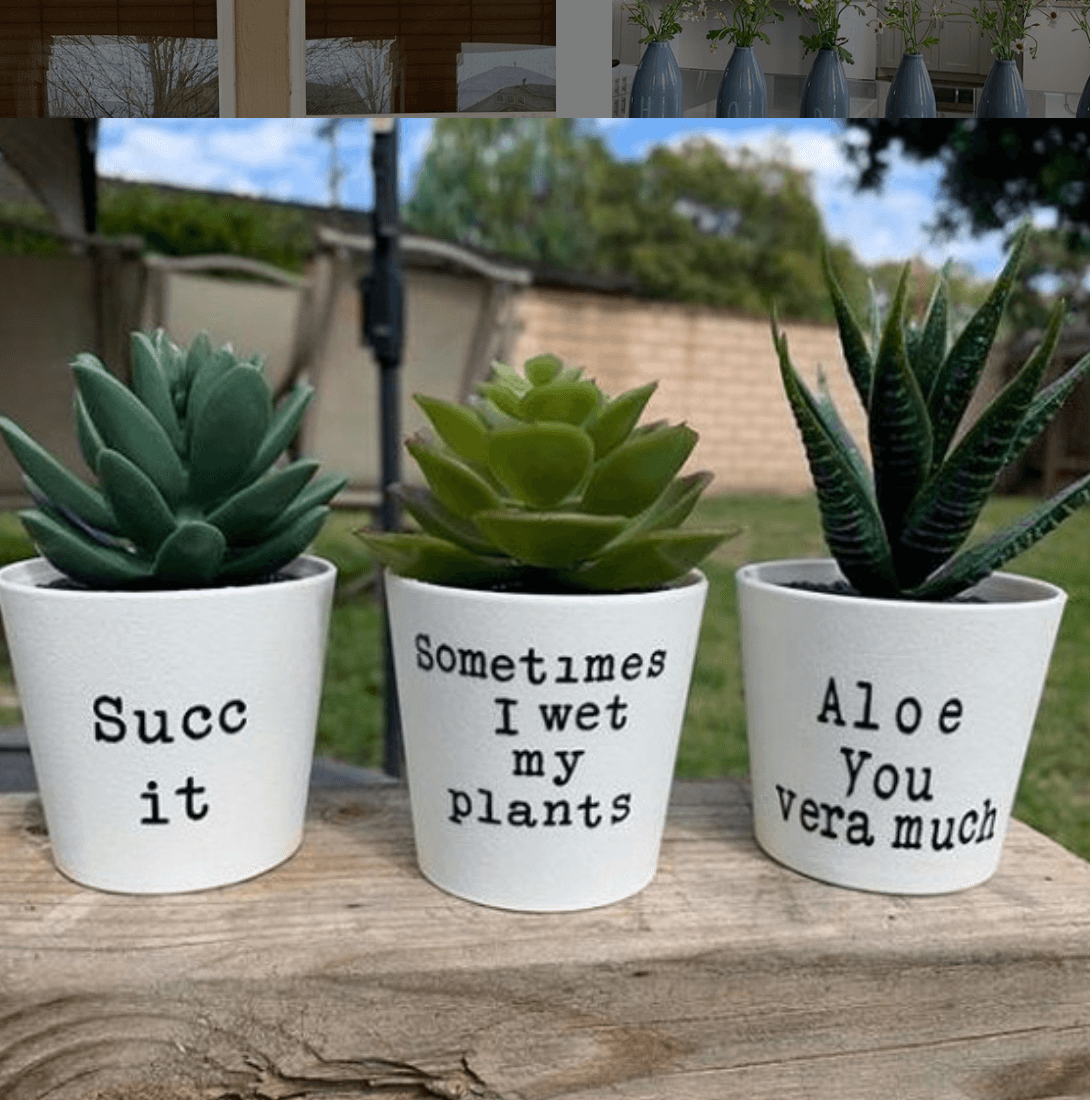 Planter pots with vinyl and funny sayings