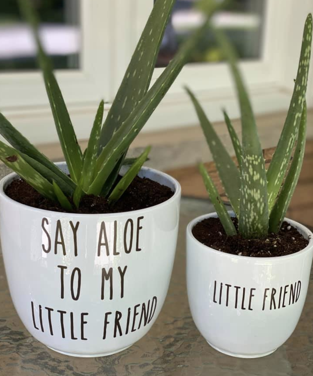 Pots with vinyl phrases