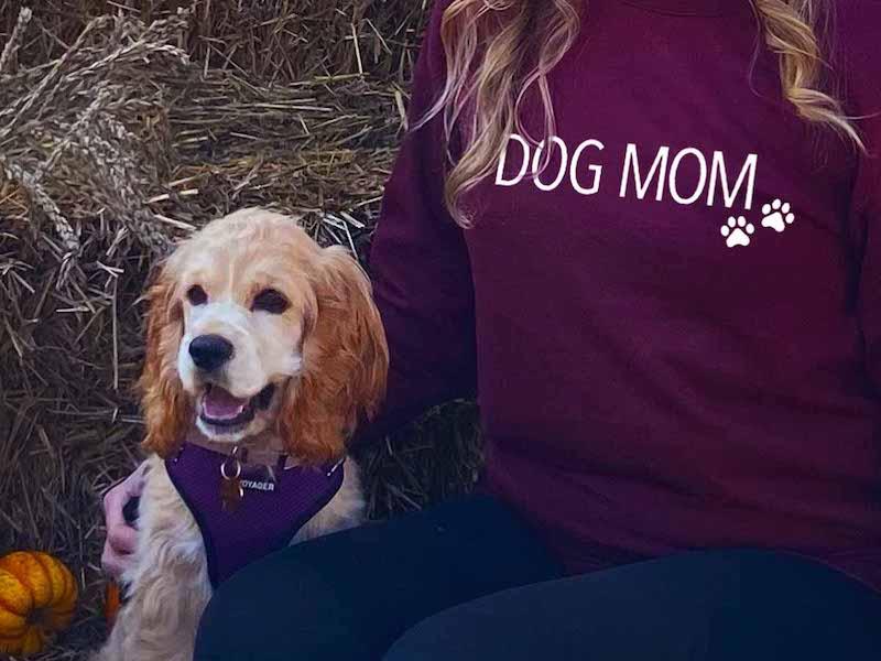 Birch and Bramble - Dog Mom sweatshirt