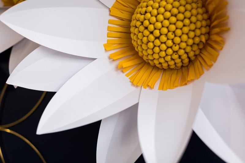 Cricut projects: Giant Paper Daisy