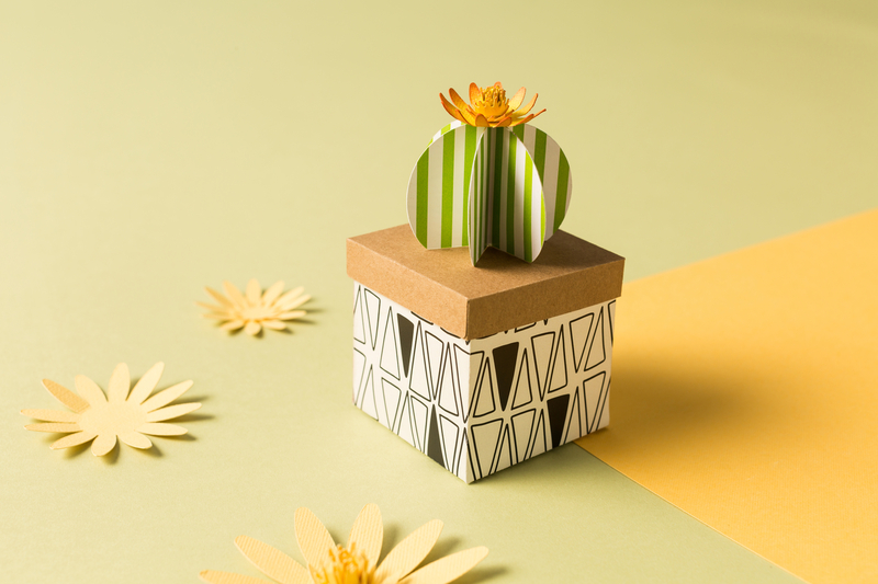 Cricut projects: Cactus Gift Box
