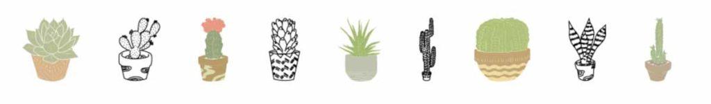 Cricut Access image set: Desert Succulents