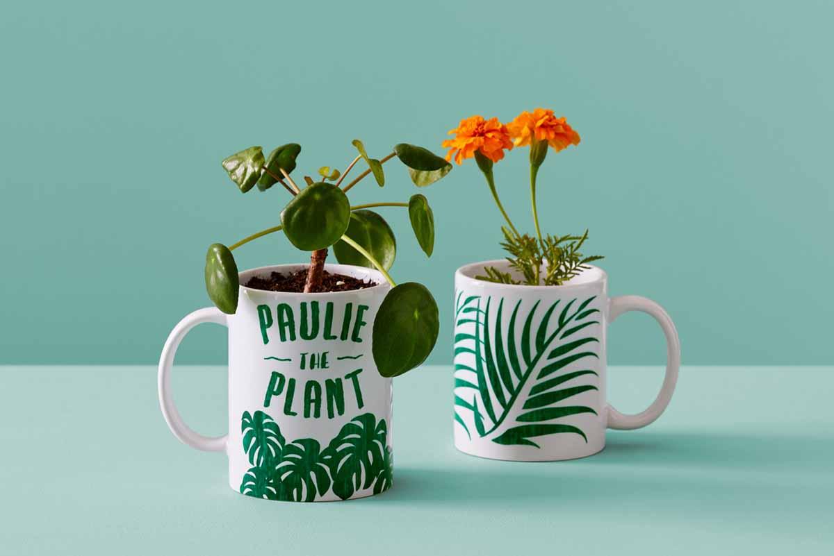 DIY mugs for plants with Cricut