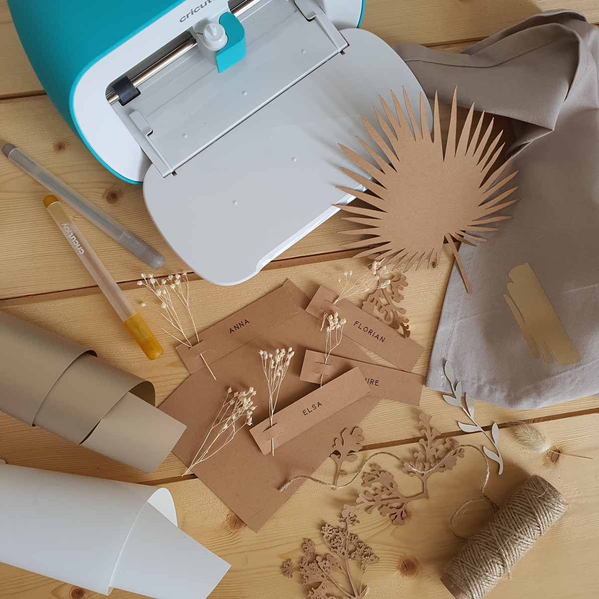 Laure Coulombel - I LOVE DIY working with Cricut Joy