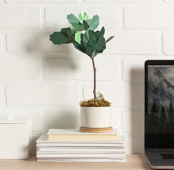 Paper flower sitting on desk