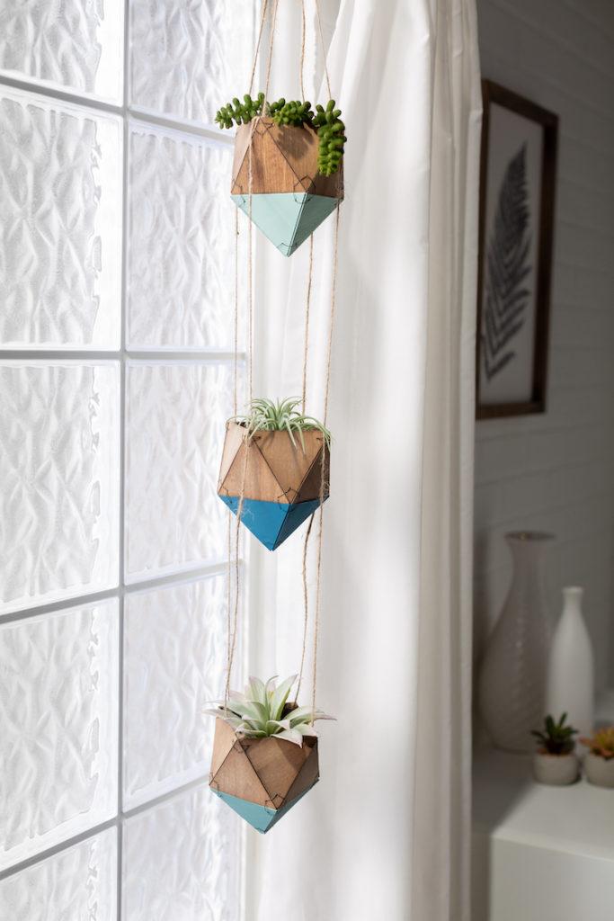 Hanging succulents in planter in window