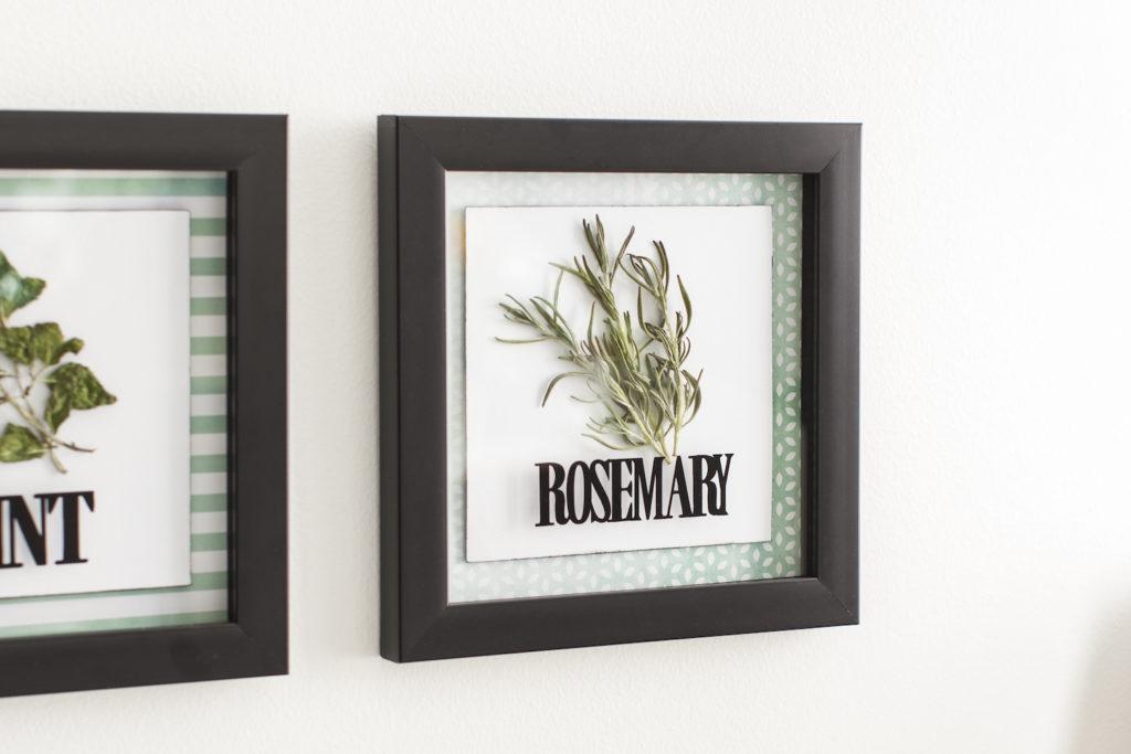 Framed garden herbs