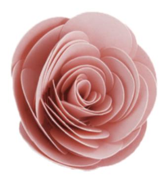Juliet Rose paper flower