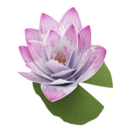lotus paper flower