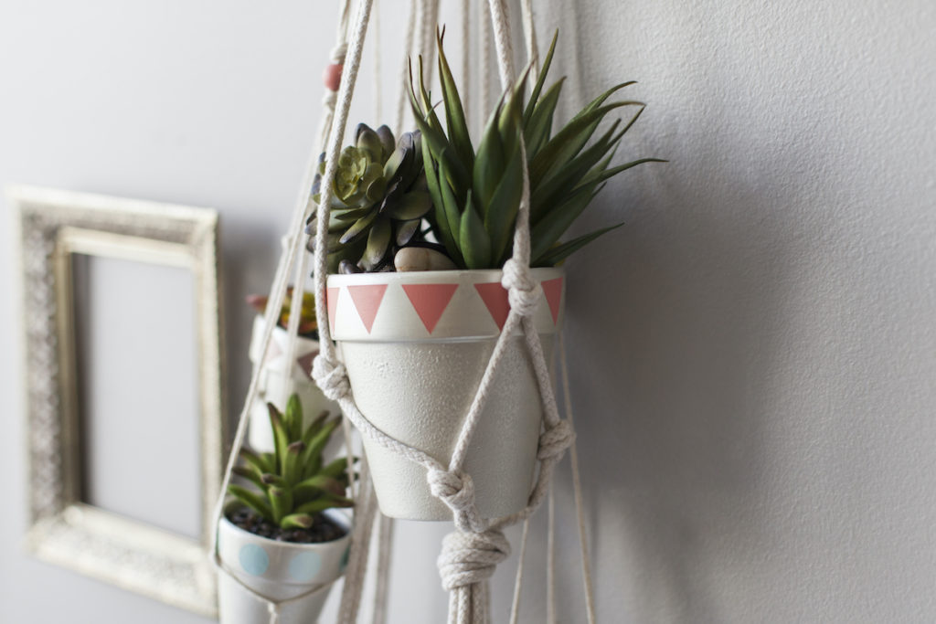 A hanging planter acts as another rental home decorating tip, with two succulents sitting in white hanging pots on a gray wall.