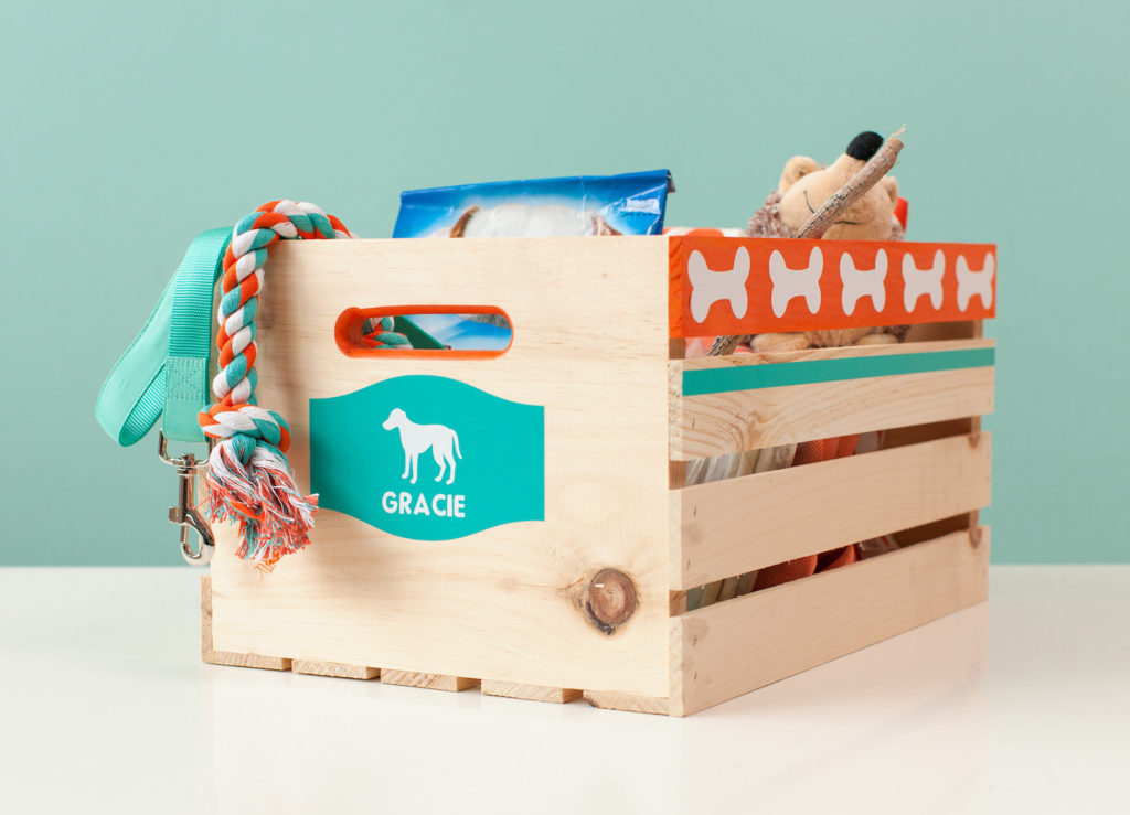 Storage crate for dog