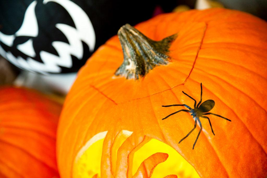 Vinyl spider decal on Halloween pumpkins